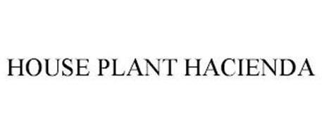 HOUSE PLANT HACIENDA