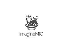 IMAGINEMIC