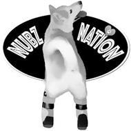 NUBZ NATION