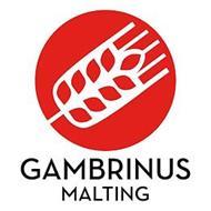 GAMBRINUS MALTING