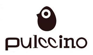 PULCCINO