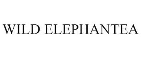 WILD ELEPHANTEA