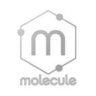 M MOLECULE