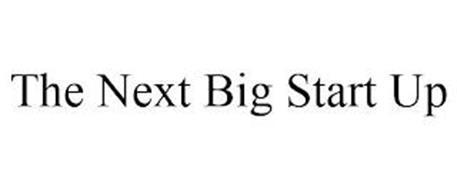 THE NEXT BIG START UP