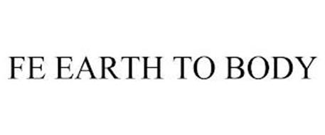 FE EARTH TO BODY