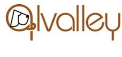 LVALLEY