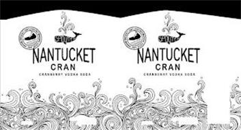 NANTUCKET CRAN CRANBERRY VODKA SODA SPOUTER NANTUCKET CRAFT COCKTAILS TRIPLE EIGHT EST. 2020