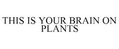 THIS IS YOUR BRAIN ON PLANTS
