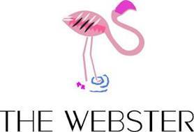 THE WEBSTER MR