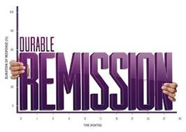 DURABLE REMISSION DURATION OF RESPONSE (%) TIME (MONTHS) 100 80 60 20 0 0 3 6 9 12 15 18 21 24 27 30