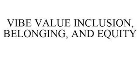 VIBE VALUE INCLUSION, BELONGING, AND EQUITY
