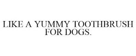 LIKE A YUMMY TOOTHBRUSH FOR DOGS.