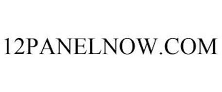 12PANELNOW.COM