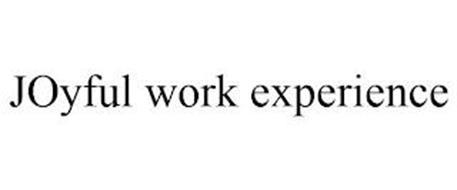 JOYFUL WORK EXPERIENCE