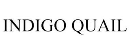 INDIGO QUAIL