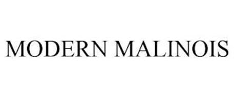 MODERN MALINOIS