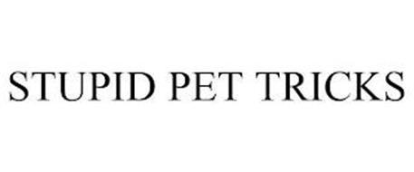STUPID PET TRICKS