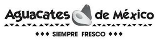 AGUACATES DE MÉXICO SIEMPRE FRESCO