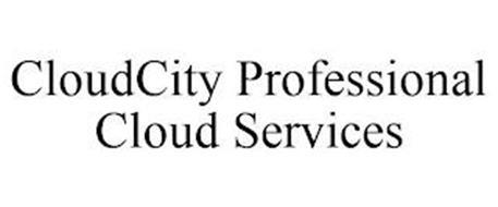 CLOUDCITY PROFESSIONAL CLOUD SERVICES
