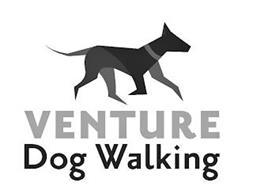 VENTURE DOG WALKING