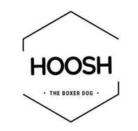 HOOSH THE BOXER DOG
