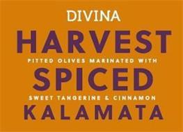DIVINA HARVEST SPICED KALAMATA PITTED OLIVES MARINATED WITH SWEET TANGERINE & CINNAMON