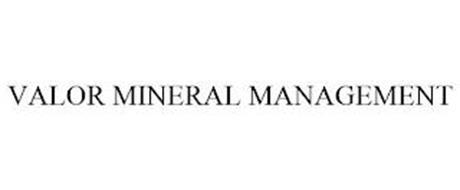 VALOR MINERAL MANAGEMENT