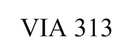 VIA 313