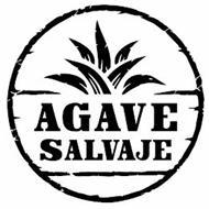 AGAVE SALVAJE