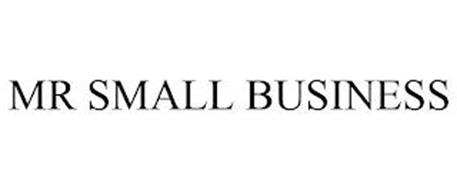 MR SMALL BUSINESS