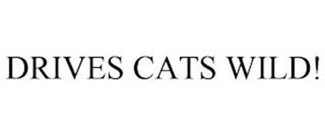 DRIVES CATS WILD!