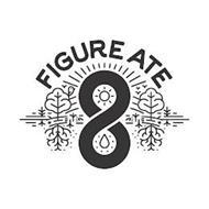 FIGURE ATE 8