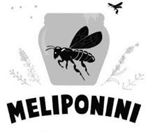 MELIPONINI HONEY