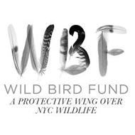 WBF WILD BIRD FUND A PROTECTIVE WING OVER NYC WILDLIFE