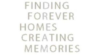 FINDING FOREVER HOMES CREATING MEMORIES DREAM