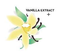 VANILLA EXTRACT +