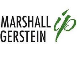 MARSHALL GERSTEIN IP