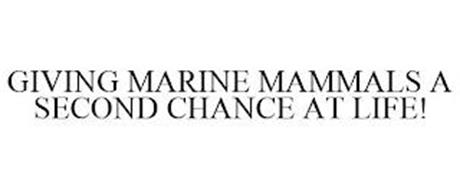 GIVING MARINE MAMMALS A SECOND CHANCE AT LIFE!