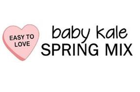 EASY TO LOVE BABY KALE SPRING MIX