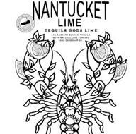 NANTUCKET LIME TEQUILA SODA MADE WITH LA LANGOSTA BLANCA TEQUILA NATURAL LEMON & LIME FLAVORS AND CARBONATION NANTUCKET CRAFT COCKTAILS TRIPLE EIGHT EST. 2020