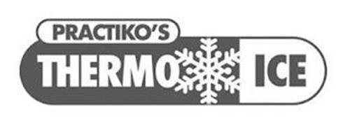 PRACTIKO'S THERMO ICE