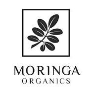 MORINGA ORGANICS