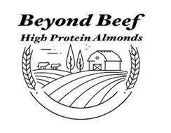 BEYOND BEEF HIGH PROTEIN ALMONDS