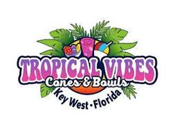 TROPICAL VIBES CONES & BOWLS KEY WEST FLORIDA