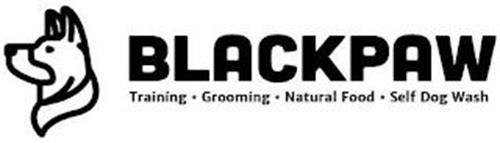 BLACKPAW TRAINING GROOMING NATURAL FOOD SELF DOG WASH