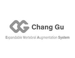 CG CHANG GU EXPANDABLE VERTEBRAL AUGMENTATION SYSTEM