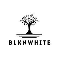BLKNWHITE