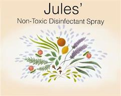 JULES' NON-TOXIC DISINFECTANT SPRAY