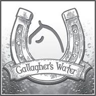 GALLAGHER'S WATER