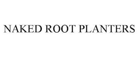 NAKED ROOT PLANTERS